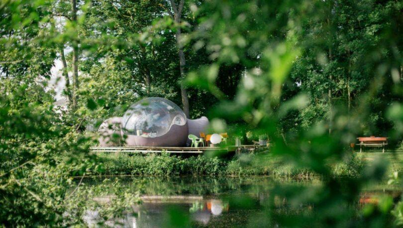 Dormir dans une bulle en pleine nature