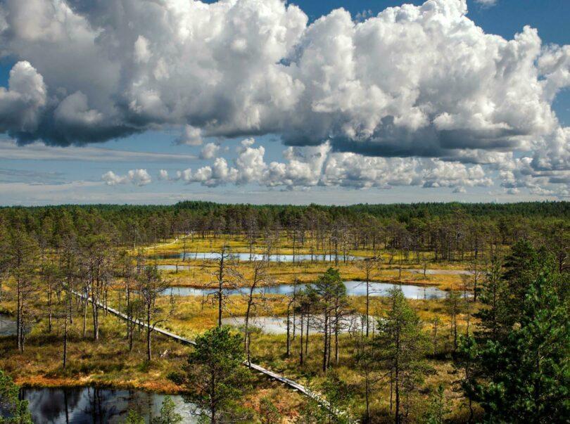 paysages d'Estonie
