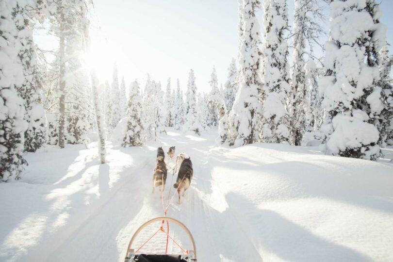 que voir en Finlande l'hiver