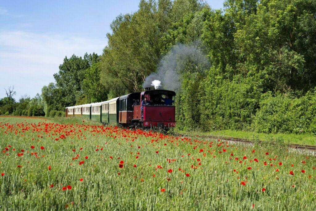 train touristique de la Baie de Somme