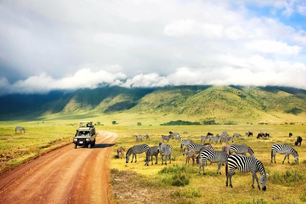 Partir à la découverte de la Tanzanie