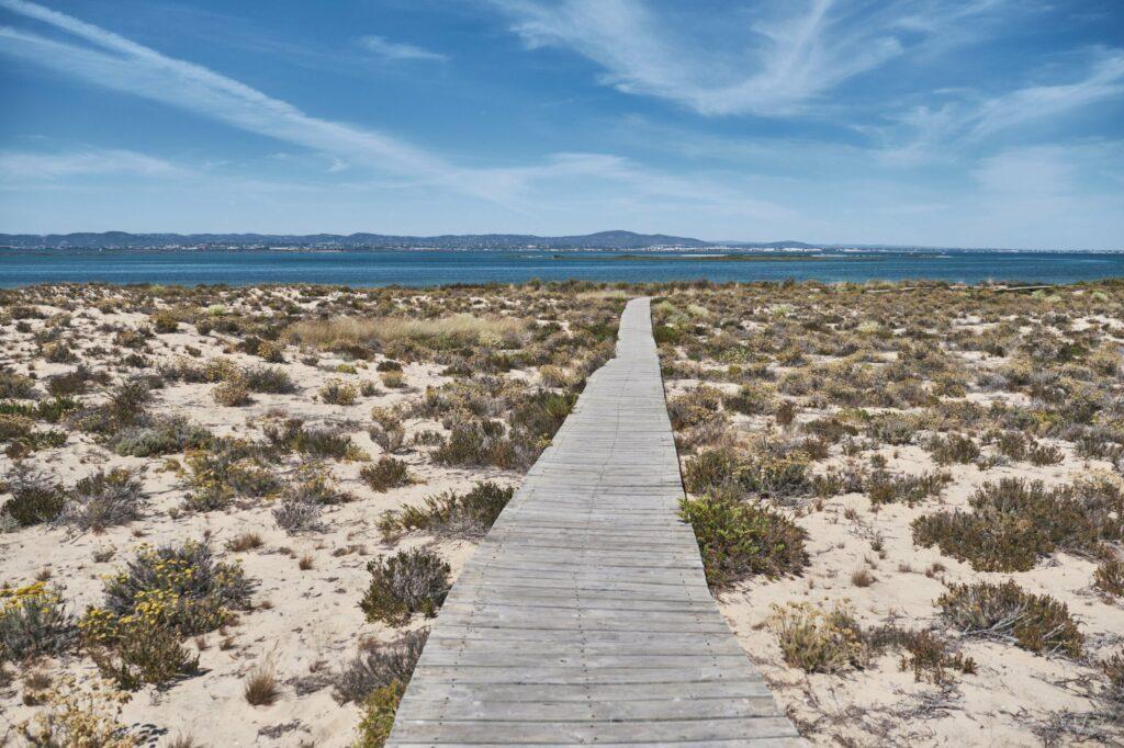 Ilha Deserta à Faro