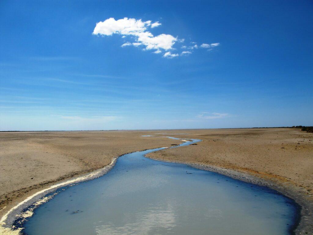 Le Marais de Vigueirat en Camargue