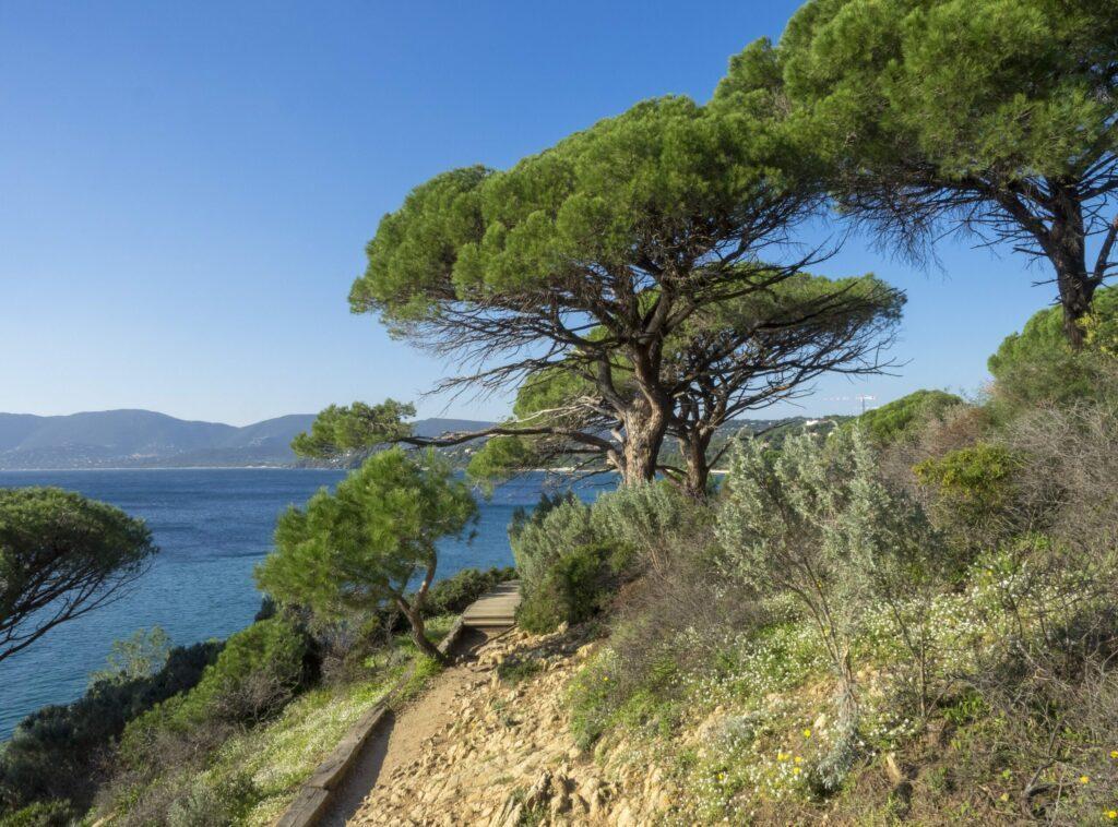 sentier littoral à faire à Saint-Tropez