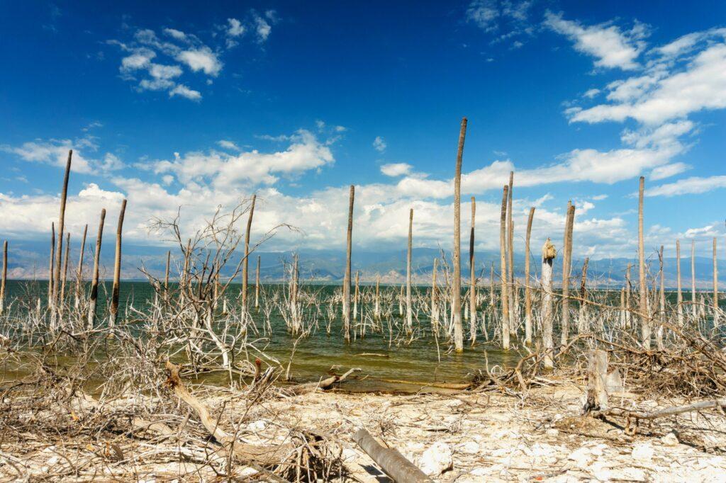 L'étonnant lac Enriquillo