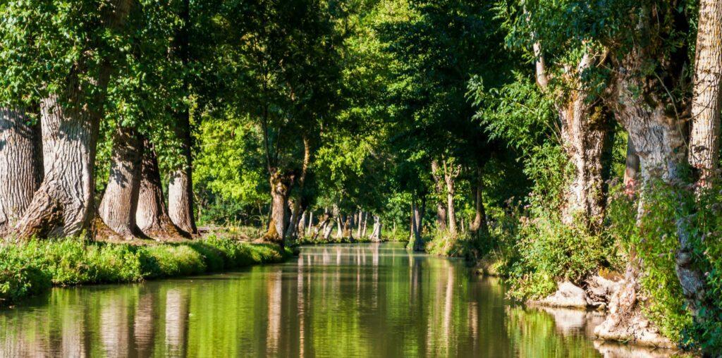 Le marais Poitevin en France