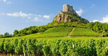 Que faire en Bourgogne