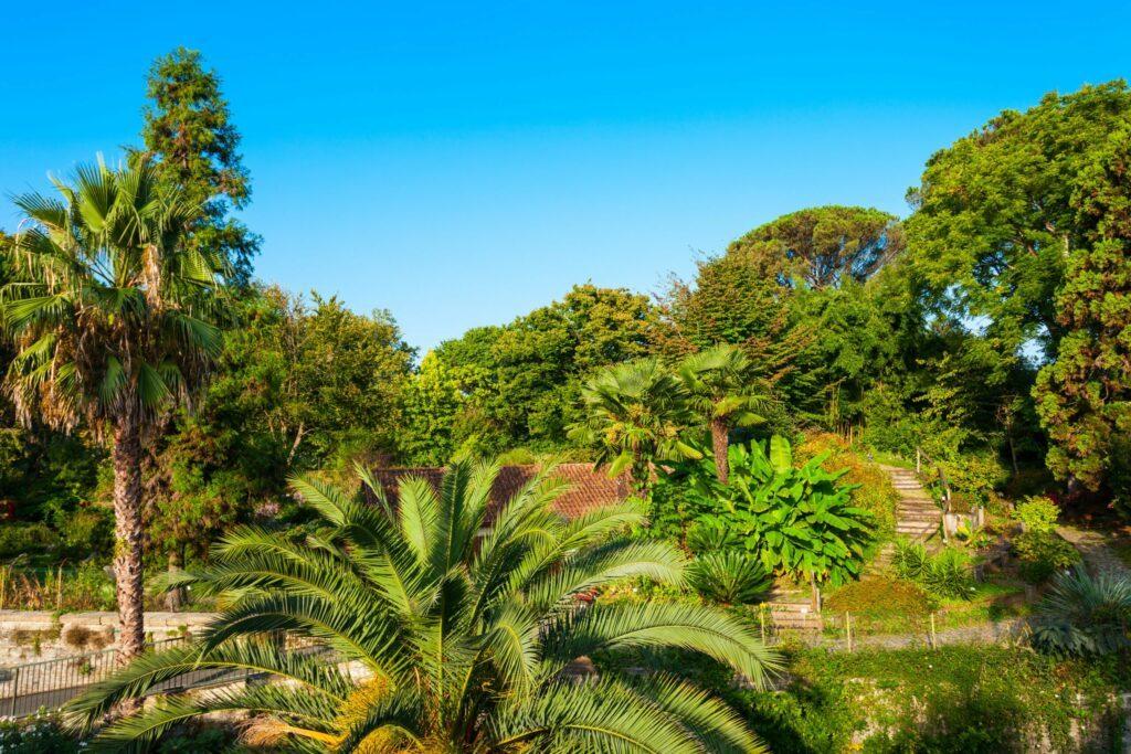 Le Jardin botanique à faire à Bayonne