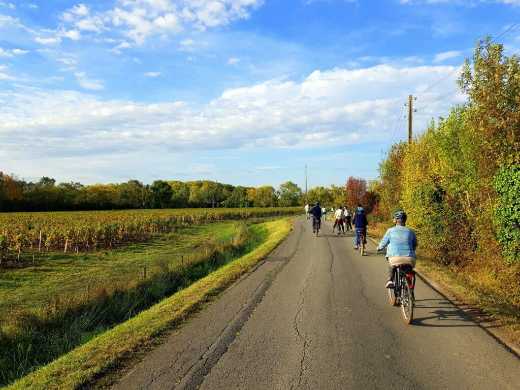 randonnée à vélo dans les vignes bordelaises