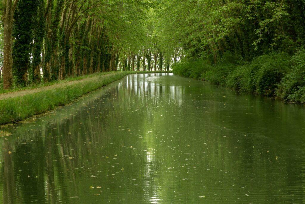 Se balader le long du canal de la Garonne