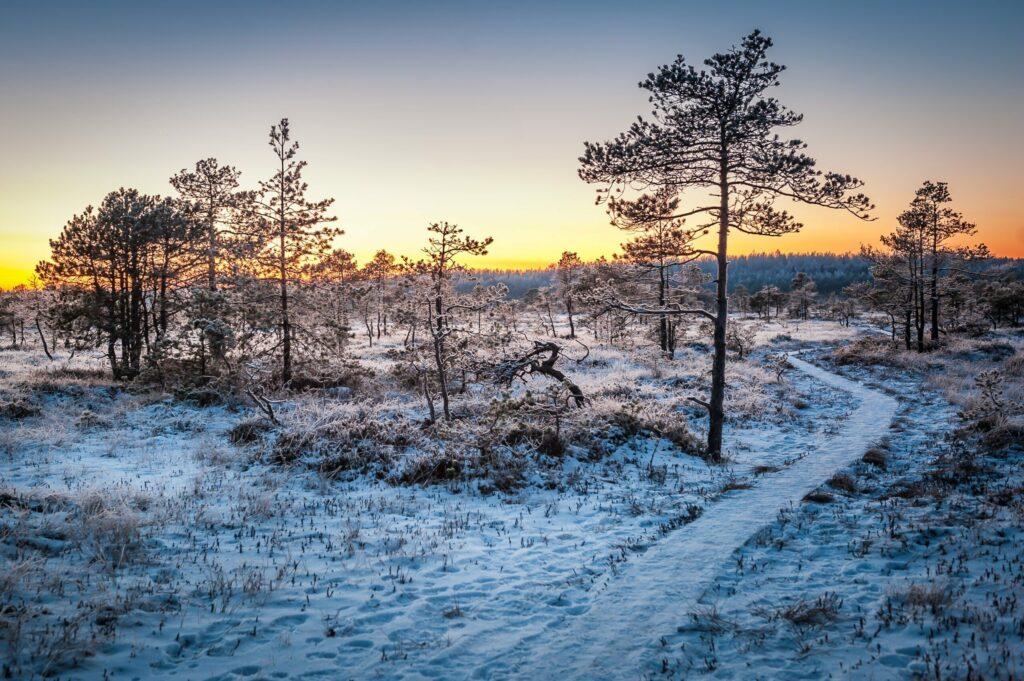 visiter l'Estonie en hiver